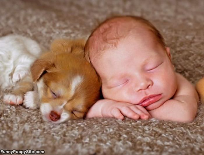 Cute Baby and Puppy Photos - callmeiris - Blog.