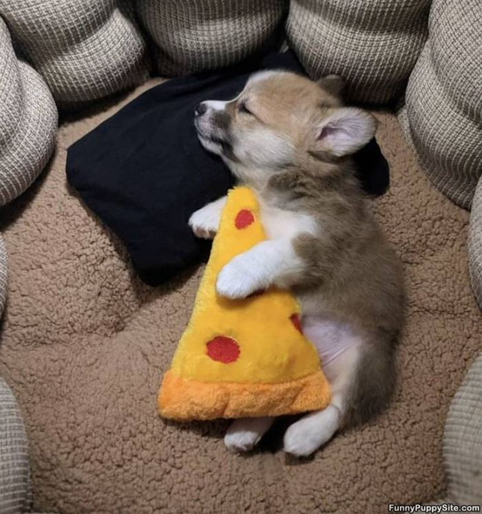Asleep With My Pizza