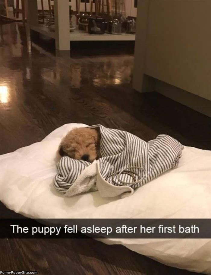 Fell Asleep After My Bath