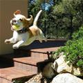 The Flying Puppy